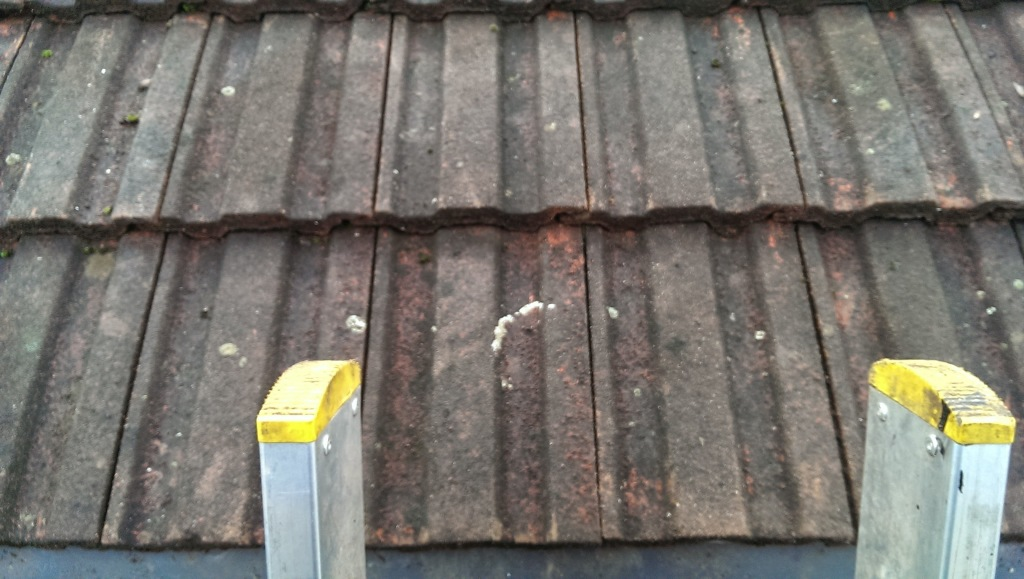Gutter Cleaning Services Clapham Junction - Call Our Team ...