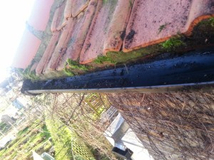 gutter cleaning service image