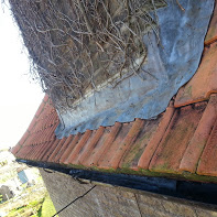 After cleaning gutter image